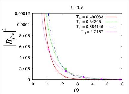 ブラックホールアナロジー系でのホーキング輻射を示す数値シミュレーション結果